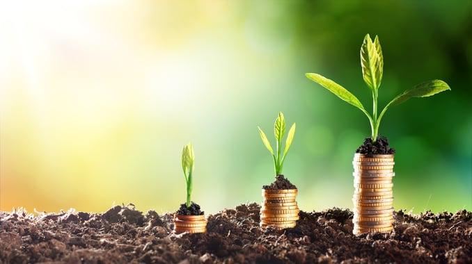 Growing plants money.jpg